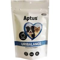 APTUS® Uri-Balance 60 tuggtabletter