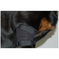 ReDog®  Armbågsskydd, enkelt