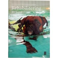 ReDog® Rehabilitering för hund